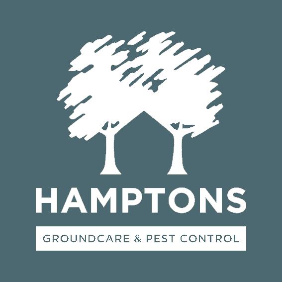 Hamptons Pest Control